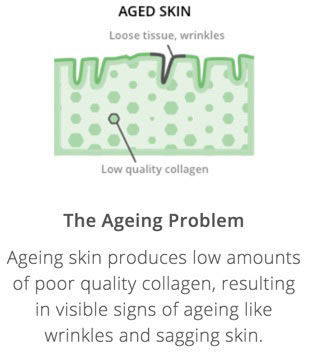 XYZ Smart Collagen how it works