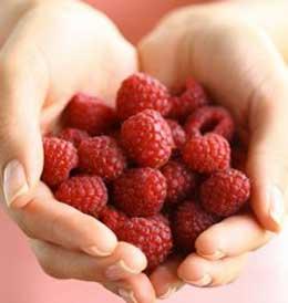 Raspberry Ketone good fat burner